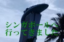 シンガポールへ観光旅行!フィリピン移住から1年も経たずになぜ海外?